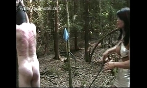 Menial confined on the top of a tree gets hits with a whip by horny mistress