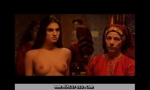 Turkish Harem carnal knowledge