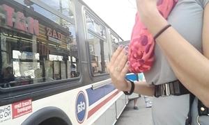 Sexy chick bantam panty bus upskirt